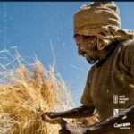 Announcement: 2016 Global Hunger Index now Available